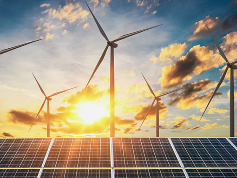 Adani, Siemens and Websol Among Companies Driving India's Transition To Clean Energy