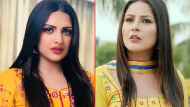 Photo of Bigg Boss 13 Updates As Shehnaaz Gill Goes Crazy As Himanshi Khurana Joins the Wildcard League
