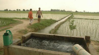 Photo of Government Spent 18k cr On Irrigation Projects In 5 Years