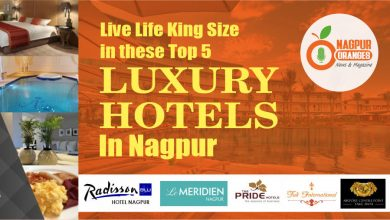 Photo of Live Life King Size in these Top 5 Luxury Hotels in Nagpur