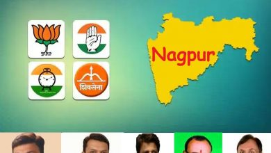 Nagpur - City Gear up for Maha Assembly Election Results Today