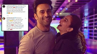 Photo of Pulkit Samrat Wished Kriti Kharbanda on her birthday day portraying the two in relationship