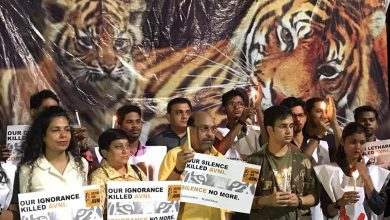 Photo of Tiger Lovers gather at Futala to mourn the murder of tigress Avni