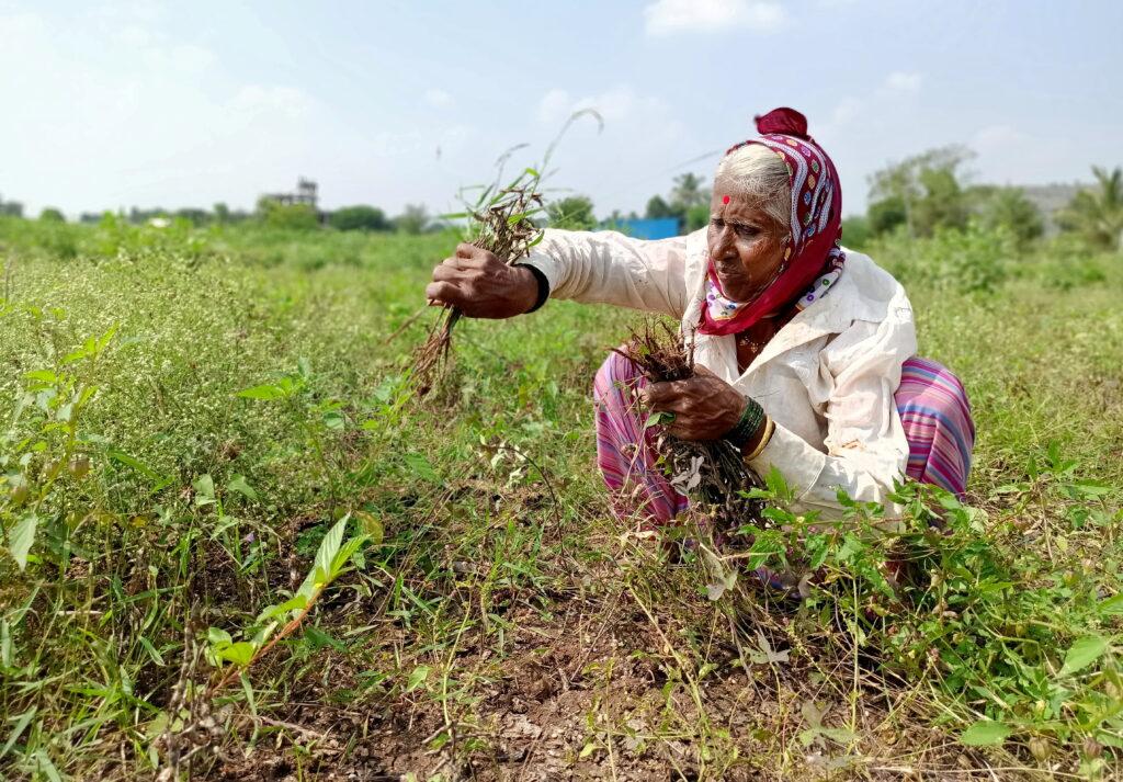 farmers facing problems