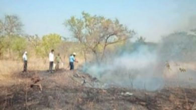 Photo of Fire Broke out at Ambazari Park Damaging grass in 9 ha land