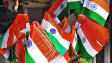 Photo of Nagpur DC Appeals To Avoid Tricolour made of Plastic